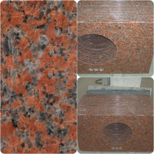 G562 Maple Red Granite Countertop for Bathroom