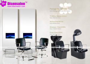 Styling Chair, Salon Chair, Barber Chair, Hairdressing Chair (Package NP1098)