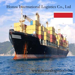 International Sea Transportation From Shenzhen/Shanghai/Tianjin to Jakarta