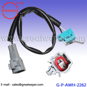 China Txl 0.5mm2 Panasonic Switch Adapter 2 Pin Connector Automotive