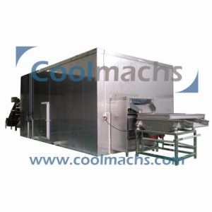 Air Blast Quick Freezing Machine for Cut Vegetable and Fruit/IQF Freezer pictures & photos