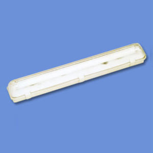 Wall and Ceiling Lamp (WL001)