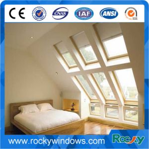 China Facyory PVC Roof Window pictures & photos