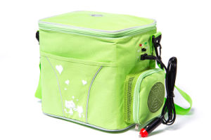 Portable Thermoelectric Mini Fridge 6liter, DC12V with Cooling and Warming for Outdoor Activity Use pictures & photos