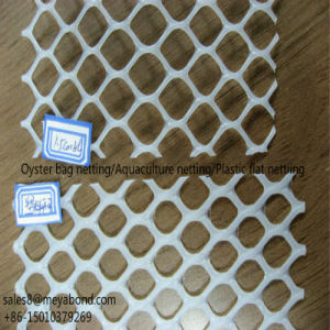 Plastic Fence Net, Oyster Bag Net pictures & photos