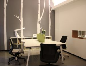 Workstation/Creative Office Furniture/Dental Office Furniture
