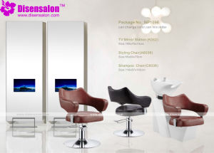 Styling Chair, Salon Chair, Barber Chair, Hairdressing Chair (Package NP1096)