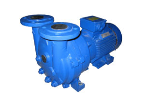 2BV5131 Water (Liquid) -Ring Vacuum Pump