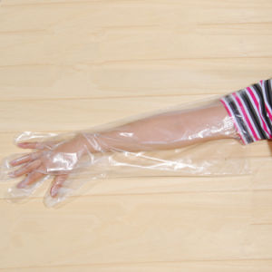 Good Sales PE Disposable Long Gloves pictures & photos