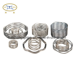 Stainless Steel Wave Spring for Industry or Manufacturer