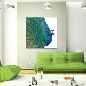 New Product 2016 Wall Paint pictures & photos