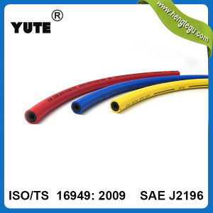 SAE J2196 High Quality Air Conditioning Refrigerant R134A Charging Hose pictures & photos
