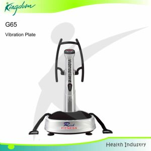 Fitness Equipment Vibration Machine Gym Equipment Vibration Plate pictures & photos