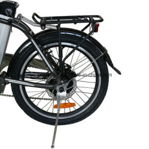 Professional Manufacturer 36V250W Electric Bicycle Powerful Optional Electric Bike Folding E-Bike Mini E-Bicycle (TDN10Z) pictures & photos