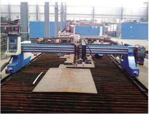 Gantry CNC Gas Cutting Machine for Ncm3060