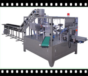 Double Filling Rotary Packing Machine (GD8-200)