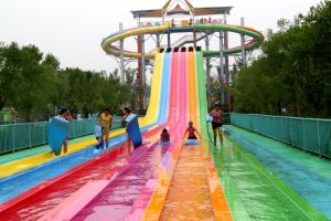 Slip Carpet Octopus Water Slide, Big Water Amusement Park Equipment (DL051) pictures & photos