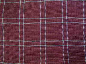 Polypropylene (PP) Check Fabric pictures & photos
