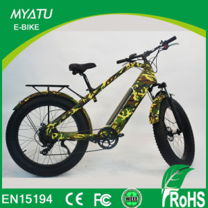 Hi Power Fat Electric Mountian Bike with 750W 48V/13ah pictures & photos