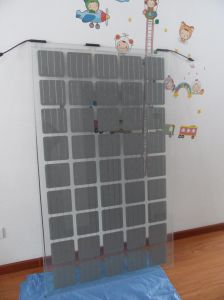 Double Glass Solar Panel, Solar Light Module with 45cells pictures & photos