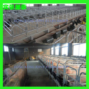 Farrowing Crate for Pig Farm/Feeder Machine/Feeder/Farm Equipment/Crate/Agricultural Machinery/Farm Machinery/Cage/Feeder/Pig Feeder/Poultry Equipment pictures & photos