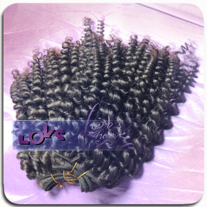 High Quality Virgin Brazilian Wavy Hair (LOKSHAIRRW02)