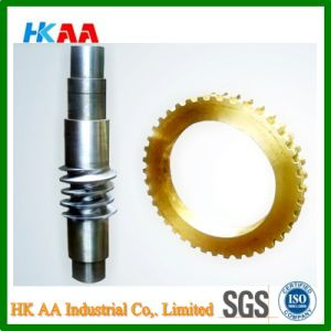 Stainless Steel Worm Shaft, Brass Worm Gear Made in China pictures & photos