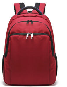 Hot-Selling Laptop Computer Bag Backpack in Shaodong pictures & photos