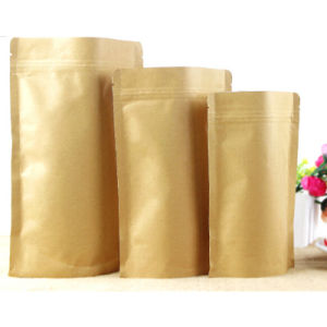 Hot Sale Top Quality Good Price Kraft Paper Bag pictures & photos