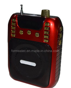 Card Radio Multi Media Loudspeaker Amplifier pictures & photos