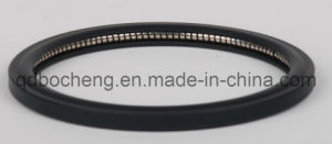 Spring Energized Teflon Seal pictures & photos