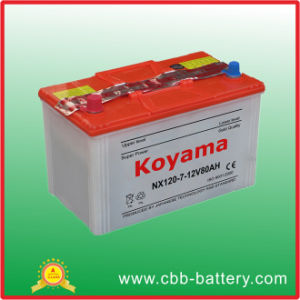 12V80ah Dry Charged Car Battery-Nx120-7 (NX120-7 N80)