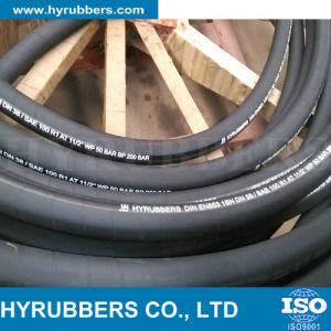 Hose Steel Wire Braiding Hose Oil Hydraulic Hose pictures & photos
