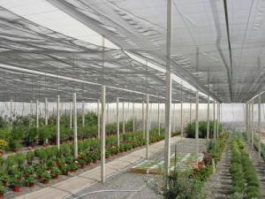 China Meyabond 60 Mesh Anti Insect Garden Netting For Plant