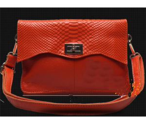 Offering Fashion Ladies Bag From Supplier (E51)
