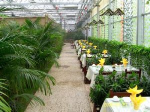 Commercial Greenhouse for Ecological Tourism Hotel