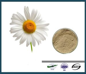 Hot Sale Feverfew Flower Extract Parthenolide 98%
