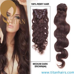 Brazilian Virgin Remy Human Clip in Hair Extension (TT493)