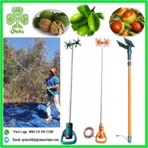 China Olive Harvest Machine - China Olive Harvest Machine
