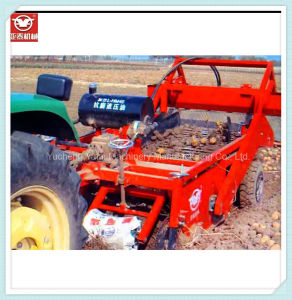 China Hot Sale 6 Rows Gather Into One Row Potato Harvester For