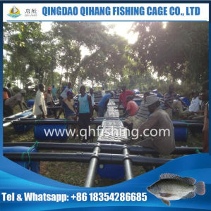 Cage Fish Farming System for Catfish Aquaculture pictures & photos