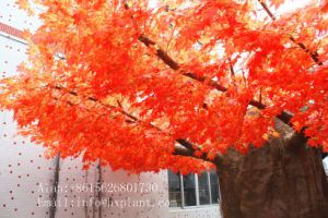 Garden Decoration Artificial Red Maple Tree for Outside or Inside pictures & photos