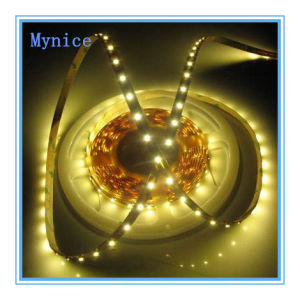 DC12V/24V Decoration SMD3014 120LEDs/M LED Strip Ce RoHS IP20IP44IP65IP67IP68 pictures & photos