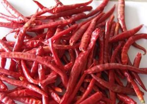 Dehydrated Red Chilli pictures & photos
