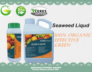 100% Organic Fertilizer Seaweed Extract, Seaweed Liquid Fertilizer pictures & photos