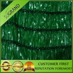 100%HDPE UV Protection Outside Sunshade Sail Cloth/Window Shade Net pictures & photos