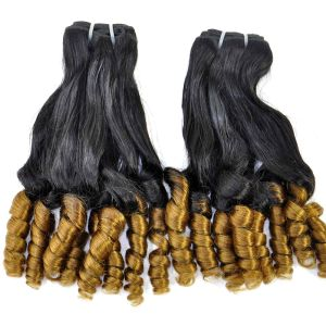 Brazilian Virgin Fumi Curly Professional Ombre Human Hair Extension