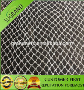 High Quality Anti Bird Animal UV Resistant Net pictures & photos