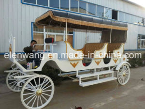 Sightseeing Horse Cart Horse Carriage with 8 Seats (GW-HC24) pictures & photos
