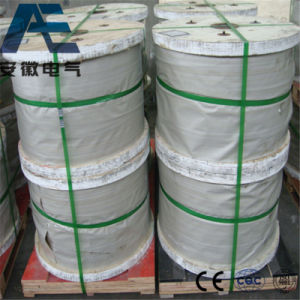 Galvanized Steel Wire, Zinc Coated, Guy Wire, Stay Wire, Gsw Wire
